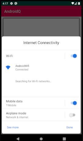 Android Q - Internet Connectiviyt